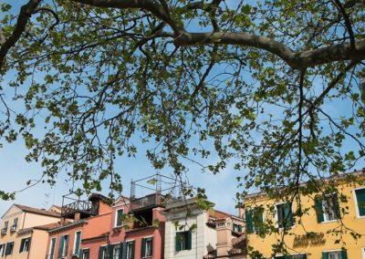 abitare-il-verde-a-venezia